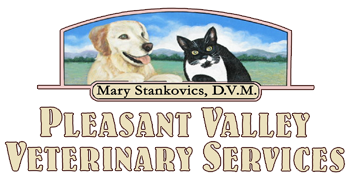 Pleasant Valley Veterinary Services